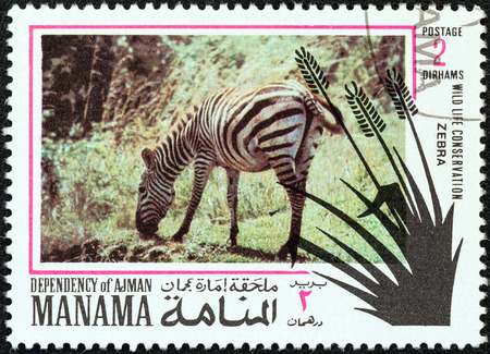 dependency: MANAMA DEPENDENCY - CIRCA 1971  A stamp printed in United Arab Emirates from the  Wildlife conservation  issue shows a zebra, circa 1971