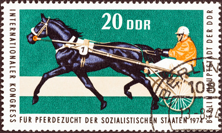timbre: GERMAN DEMOCRATIC REPUBLIC - CIRCA 1974: A stamp printed in Germany from the \International Horse breeders\