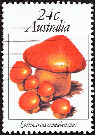 stempel: AUSTRALIA - CIRCA 1981: A stamp printed in Australia from the \Australian Fungi \ issue shows Cortinarius cinnabarinus, circa 1981.