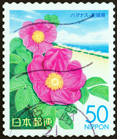 timbre: JAPAN - CIRCA 2007: A stamp printed in Japan from the Prefectural Stamps - Kanto. Flowers  issue shows Rosa rugosa, circa 2007.