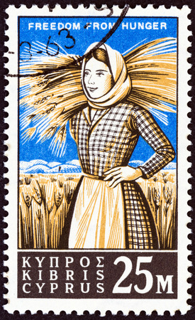 kypros: CYPRUS - CIRCA 1963: A stamp printed in Cyprus from the Freedom from Hunger  issue shows harvester, circa 1963. Editorial