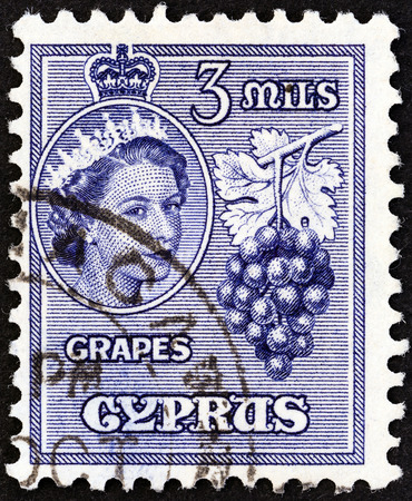 kypros: CYPRUS - CIRCA 1955: A stamp printed in Cyprus shows grapes and Queen Elizabeth II, circa 1955. Editorial