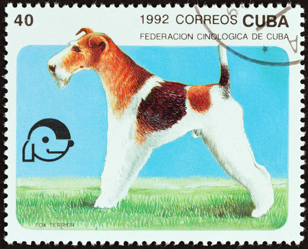 estampilla: CUBA - CIRCA 1992: A stamp printed in Cuba from the Dogs  issue shows Fox terrier, circa 1992.