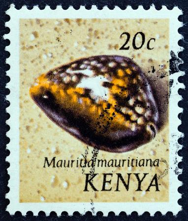 sello: KENYA - CIRCA 1971: A stamp printed in Kenya from the \Sea Shells \ issue shows Humpback cowry (Mauritia mauritiana), circa 1971.