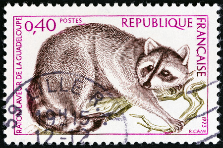 postes: FRANCE - CIRCA 1973: A stamp printed in France from the \Nature Conservation \ issue shows Guadeloupe Raccoon (Procyon lotor minor), circa 1973. Editorial