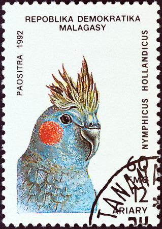 estampilla: MADAGASCAR - CIRCA 1992: A stamp printed in Madagascar from the Birds issue shows a Cockatiel (Nymphicus hollandicus), circa 1992. Editorial