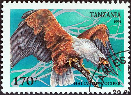 estampilla: TANZANIA - CIRCA 1994: A stamp printed in Tanzania from the Birds of Prey issue shows African fish eagle (Haliaeetus vocifer), circa 1994. Editorial