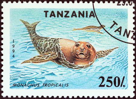 indian postal stamp: TANZANIA - CIRCA 1994: A stamp printed in Tanzania from the Endangered Species issue shows Carribean monk seals (Monachus tropicalis), circa 1994.