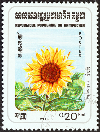 kampuchea: KAMPUCHEA - CIRCA 1983: A stamp printed in Kampuchea from the \Flowers \ issue shows Sunflower, circa 1983.