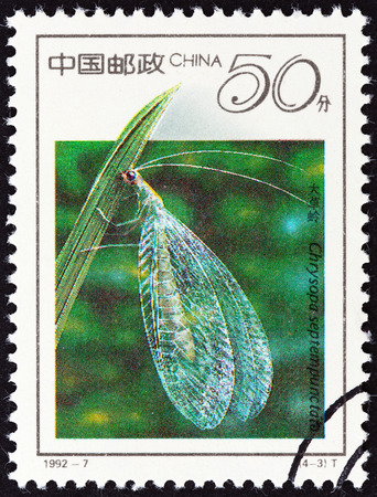 chrysopidae: CHINA - CIRCA 1992: A stamp printed in China from the \19th International Entomology Congress, Beijing - Insects \ issue shows Lacewing (Chrysopa septempunctata), circa 1992. Editorial