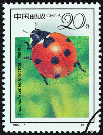 septempunctata: CHINA - CIRCA 1992: A stamp printed in China from the \19th International Entomology Congress, Beijing - Insects \ issue shows Seven-spotted ladybug (Coccinella septempunctata), circa 1992.