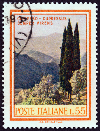 sello: ITALY - CIRCA 1968: A stamp printed in Italy from the \Trees and Bushes \ issue shows Italian Cypress (Cupressus sempervirens), circa 1968.