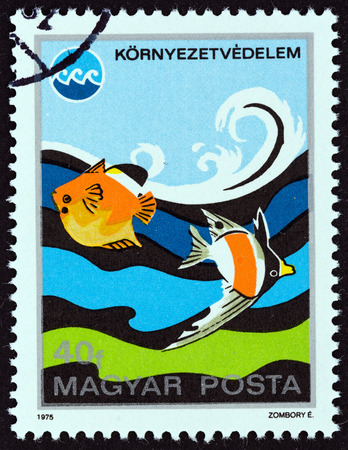 fish exhibition: HUNGARY - CIRCA 1975: A stamp printed in Hungary from the International Exposition, Okinawa. Environmental Protection  issue shows Ocean Pollution, circa 1975.