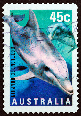 estampilla: AUSTRALIA - CIRCA 1998: A stamp printed in Australia from the \\\Marine Life \\\ issue shows Bottlenose Dolphin (Tursiops truncatus), circa 1998.