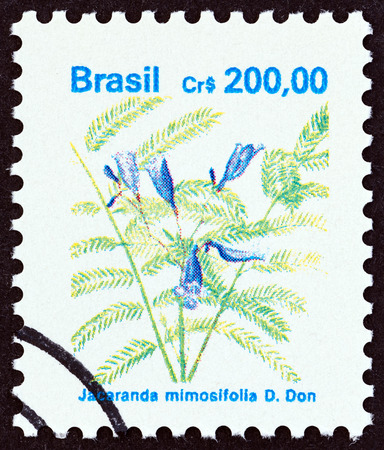 lamiales: BRAZIL  CIRCA 1990: A stamp printed in Brazil from the Flowers  issue shows Jacaranda mimosifolia circa 1990.