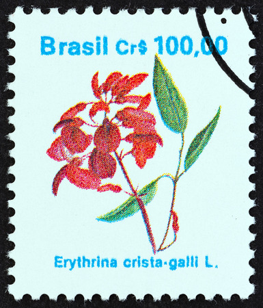 erythrina: BRAZIL  CIRCA 1990: A stamp printed in Brazil from the Flowers  issue shows Erythrina cristagalli circa 1990.