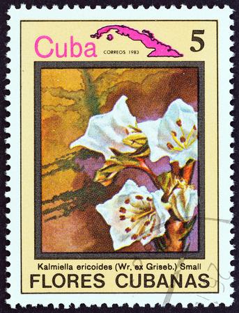 sello: CUBA  CIRCA 1983: A stamp printed in Cuba from the Cuban flowers issue shows Kalmiella ericoides circa 1983. Editorial