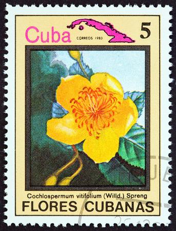 CUBA  CIRCA 1983: A stamp printed in Cuba from the Cuban flowers issue shows Cochlospermum vitifolium circa 1983.