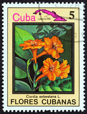 CUBA  CIRCA 1983: A stamp printed in Cuba from the Cuban flowers issue shows Cordia sebestana circa 1983. Editorial