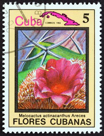 estampilla: CUBA  CIRCA 1983: A stamp printed in Cuba from the Cuban flowers issue shows Melocactus actinacanthus Areces circa 1983. Editorial