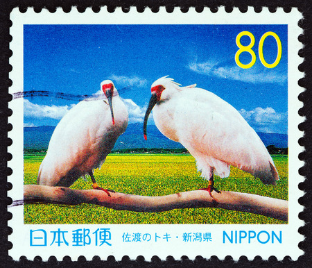 china stamps: JAPAN  CIRCA 1999: A stamp printed in Japan from the Prefectural Stamps  Niigata  issue shows Youyou and Yangyang a pair of Crested ibis Nipponia nippon present from China circa 1999.