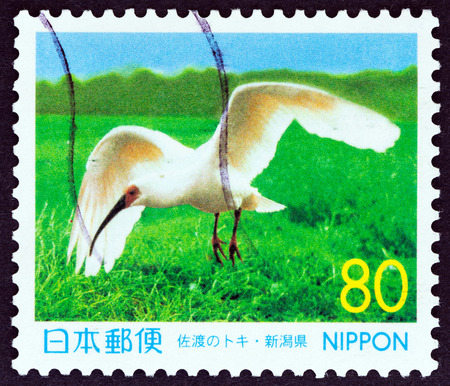 kin: JAPAN  CIRCA 1999: A stamp printed in Japan from the Prefectural Stamps  Niigata  issue shows Kin the last native Crested ibis Nipponia nippon circa 1999.