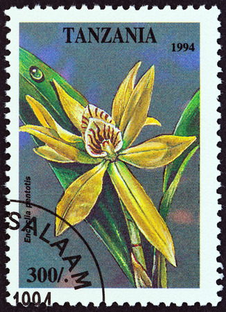 timbre: TANZANIA  CIRCA 1994: A stamp printed in Tanzania from the Tropical Flowers  issue shows Encyclia pentotis circa 1994. Editorial