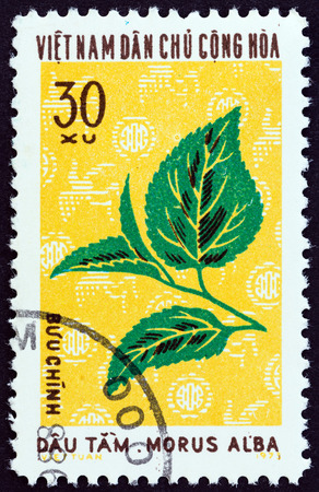 estampilla: NORTH VIETNAM  CIRCA 1974: A stamp printed in North Vietnam from the Textile Plants  issue shows White mulberry Morus alba circa 1974.