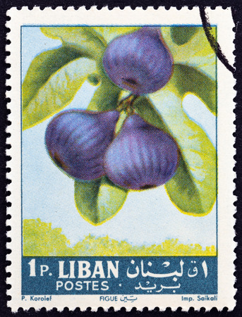libani: LEBANON - CIRCA 1962: A stamp printed in Lebanon from the Fruits  issue shows figs Ficus carica, circa 1962.
