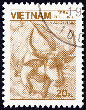 sello: VIETNAM - CIRCA 1984: A stamp printed in Vietnam from the Plants and Animals  issue shows Water Buffalo Bubalus bubalis, circa 1984.