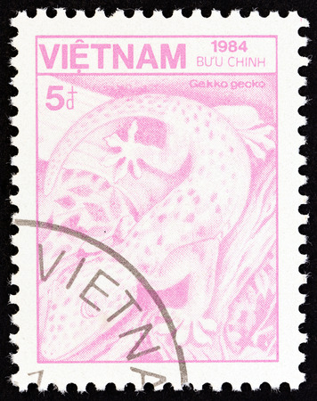 tokay gecko: VIETNAM - CIRCA 1984: A stamp printed in Vietnam from the Plants and Animals  issue shows Tokay gecko Gekko gecko, circa 1984.
