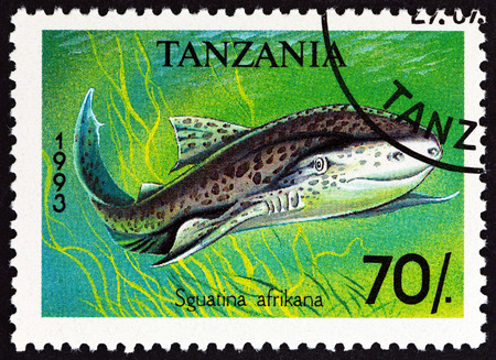 indian postal stamp: TANZANIA - CIRCA 1993: A stamp printed in Tanzania from the Sharks  issue shows  African angelshark Squatina africana, circa 1993. Editorial