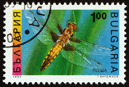 libellula: BULGARIA - CIRCA 1993: A stamp printed in Bulgaria from the Insects issue shows a  Four-spotted chaser Libellula quadrimaculata, circa 1993. Editorial