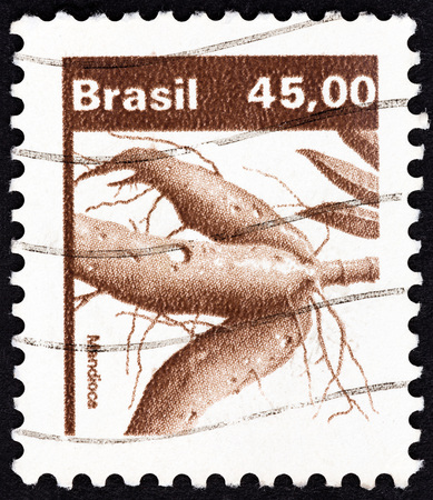 esculenta: BRAZIL - CIRCA 1983: A stamp printed in Brazil from the Agricultural Products  issue shows Manioc Manihot esculenta, circa 1983.