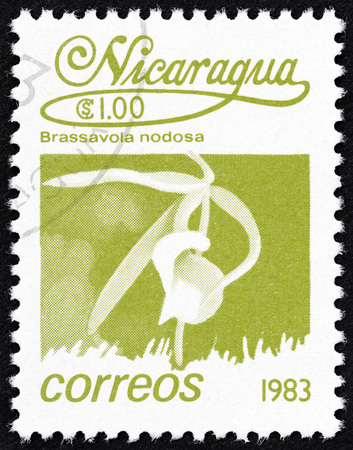 NICARAGUA - CIRCA 1983: A stamp printed in Nicaragua from the Flowers issue shows Brassavola nodosa, circa 1983.