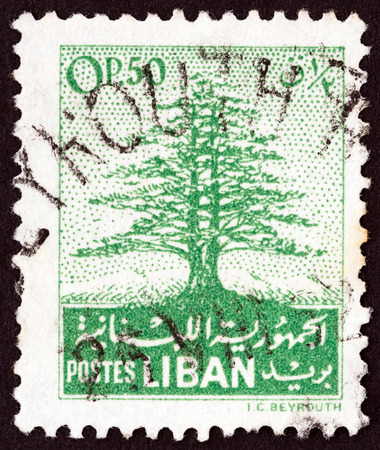 cedro: L�BANO - CIRCA 1952: Un sello impreso en el L�bano muestra cedro del L�bano, alrededor de 1952. Editorial