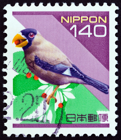 postage stamps: JAPAN - CIRCA 1998: A stamp printed in Japan from the Prefectural Stamps - Hokkaido, Birds  issue shows Chinese grosbeak Eophona migratoria, circa 1998.