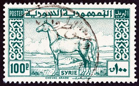 arabe: SIRIA - alrededor de 1946: Un sello impreso en Siria muestra caballo árabe, alrededor del año 1946. Editorial