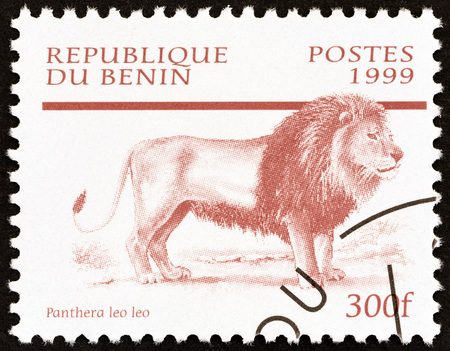 leo: BENIN - CIRCA 1999: A stamp printed in Benin from the Mammals  issue shows Lion (Panthera leo), circa 1999.