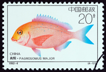 chinese postage stamp: CHINA - CIRCA 1992: A stamp printed in China from the Offshore Breeding Projects  issue shows Japanese seabream (Pagrosomus major), circa 1992.