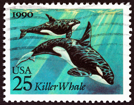 timbre: USA - CIRCA 1990: A stamp printed in USA from the Marine Mammals  issue shows Killer Whales (Orcinus orca), circa 1990. Editorial