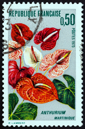 postes: FRANCE - CIRCA 1973: A stamp printed in France from the Martinique Flower Cultivation  issue shows Anthurium, circa 1973. Editorial