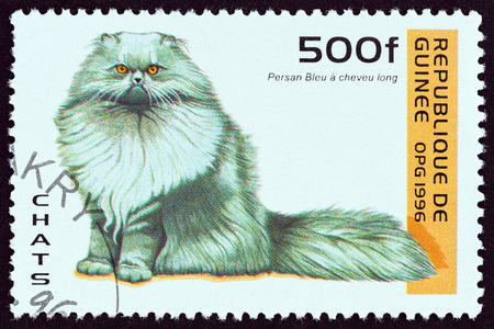 GUINEA - CIRCA 1996: A stamp printed in Guinea from the Cats  issue shows  Blue Persian cat, circa 1996.
