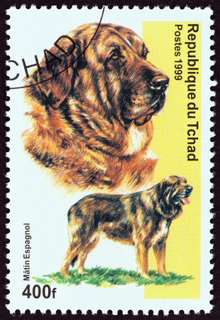 CHAD - CIRCA 1999: A stamp printed in Chad from the Dogs  issue shows Spanish Mastiff Dog, circa 1999. Editorial