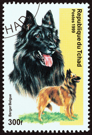 timbre: CHAD - CIRCA 1999: A stamp printed in Chad from the Dogs  issue shows Belgian Shepherd Dog, circa 1999.