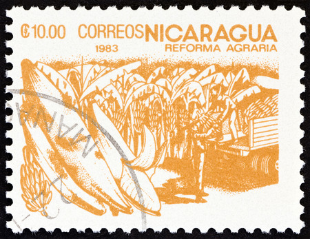 NICARAGUA - CIRCA 1983: A stamp printed in Nicaragua from the Agrarian Reform issue shows Bananas, circa 1983.