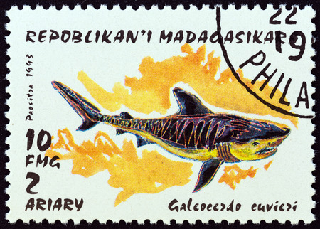 sello: MADAGASCAR - CIRCA 1993: A stamp printed in Madagascar from the Sharks  issue shows Tiger Shark (Galeacerdo cuvieri), circa 1993.