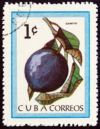 CUBA - CIRCA 1963: A stamp printed in Cuba from the