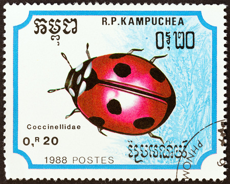 KAMPUCHEA - CIRCA 1988: A stamp printed in Kampuchea from the Insects  issue shows Seven-spotted Ladybird (Coccinella septempunctata), circa 1988. Editorial