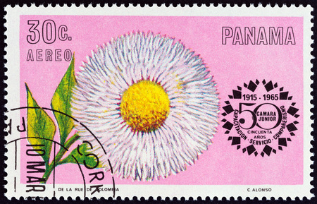central chamber: PANAMA - CIRCA 1966: A stamp printed in Panama from the 50th anniversary of Junior Chamber of Commerce - Flowers  issue shows Double Daisy (Bellis perennis), circa 1966. Editorial